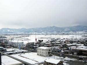 Fuyu2011130