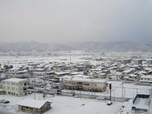 Fuyu201112171