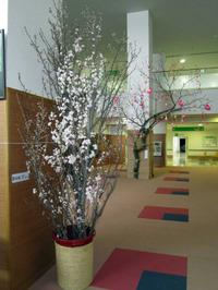 Keiozakura2012