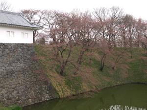 Kajyo20120422