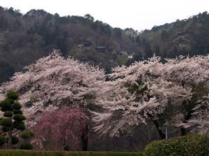 Yamadera201204301