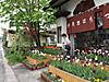 Hachimitsu201205041