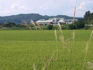 Asahi201208261
