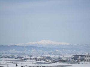 Shiki20126