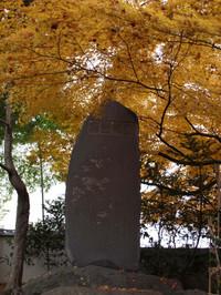 Momiji20127