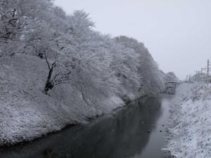 Yamagata201301031