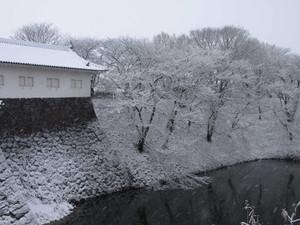 Yamagata201301036