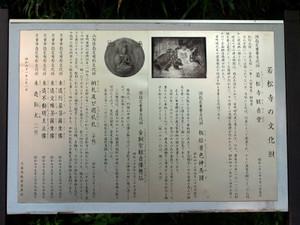 Jakushouji20074